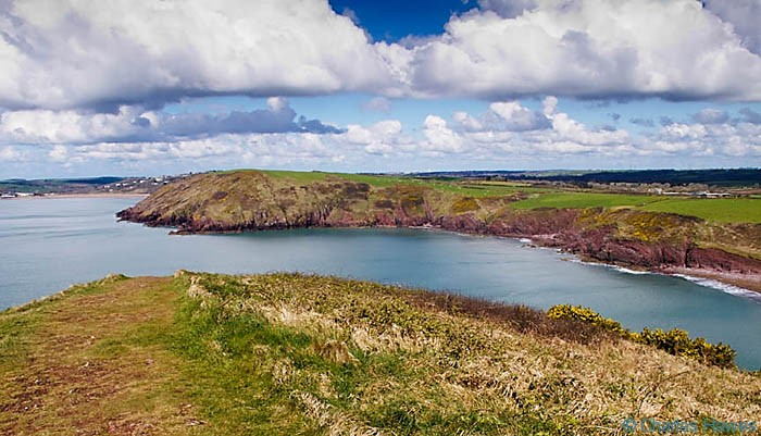 View from East Moor Cliff looking to West Moor Cliff across Swanlake Bay on the Wales Coast Path, Pembrokeshire, photographed by Charles Hawes