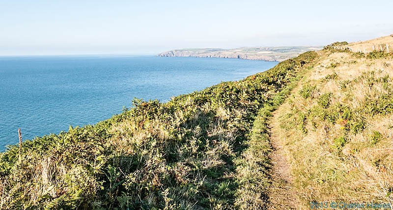Wales Coast Path between Newport and Moylgrove, photographed by Charles Hawes