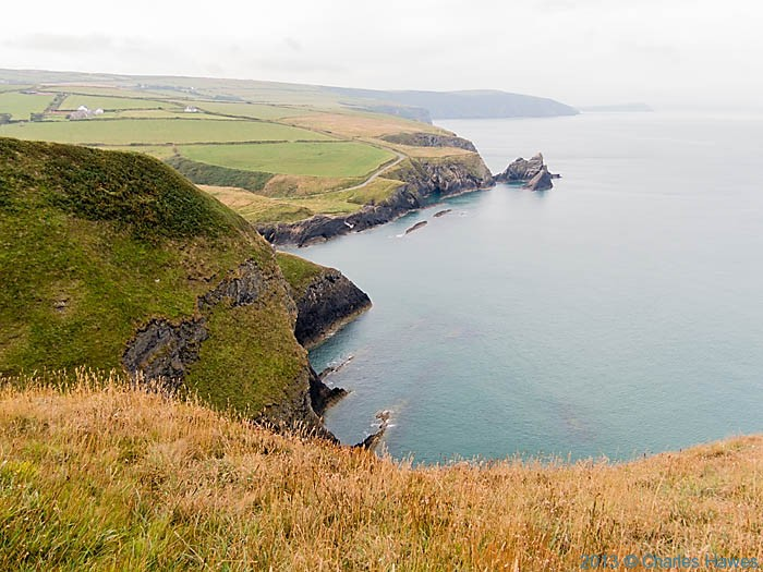 View towards Newport, Pembrokeshire photographed from the Wales Coast Path by Charles Hawes