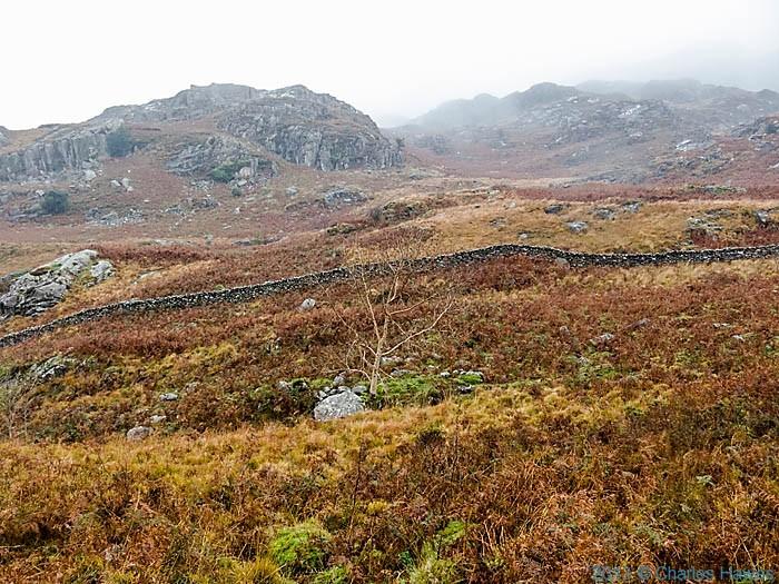 Sheep wall above Nantmor, Snowdonia, photographed by Chgarles Hawes
