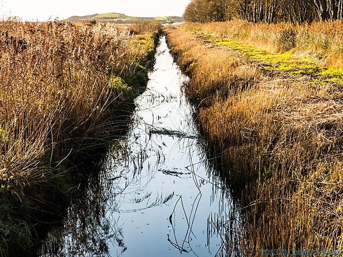 Drainage ditch on the Dyfi national Nature Reserve, photographed from The Wales Coast path by Charles Hawes