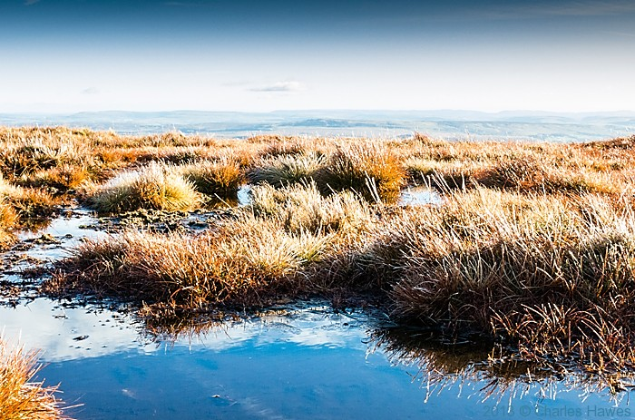 Frozen grass on Corn Du, Brecon Beacons National Park, photographed by Charles Hawes
