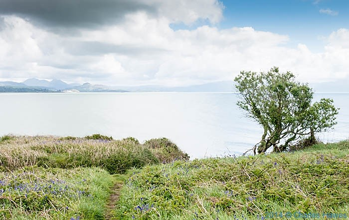 View  to Snowdonia from Pen-Y- Chain, Lleyn Peninsula, photographed from The Wsales Coast Path by Charles Hawes