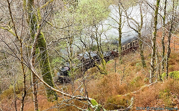 Train on the Ffestiniog railway near Plas Tan-y-Bwlch, photographed from The Wales Coast Path by Charles Hawes