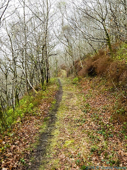 Walking the wales Coast Path near the Ffestiniog railway, photographed by Charles Hawes