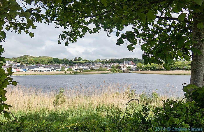 View to Pwllheli from across  The  Lon Cob Bach Nature Reserve, photographed from The Wales Coast Path by Charles Hawes