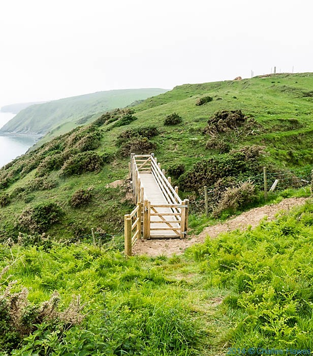 Bridge on The wales Coast Path abovePorth Ysgo, photographed by Charles Hawes
