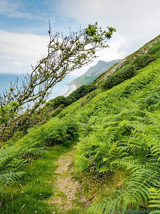Charles Hawes Walks The Wales Coast Path From Morfa Nefyn