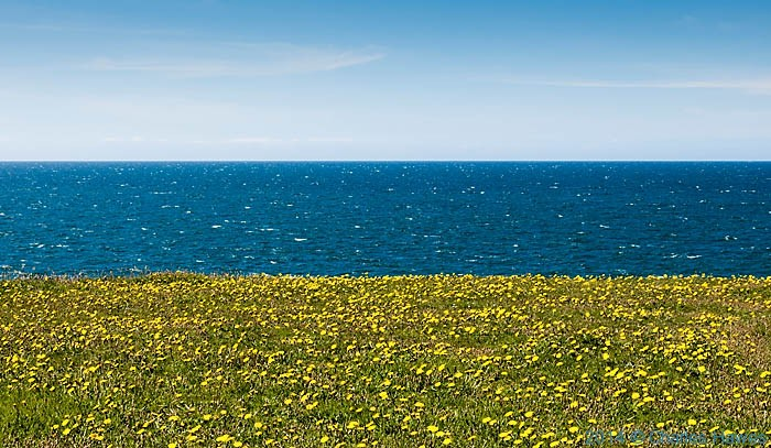 Sea off the Wales Coast Path near Morfa Nefyn, photographed from The Wales Coast Path by Charles Hawes