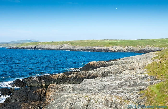 Near Porth Ferin, photographed from The wales Coast Path on the Lleyn peninsula by Charles Hawes