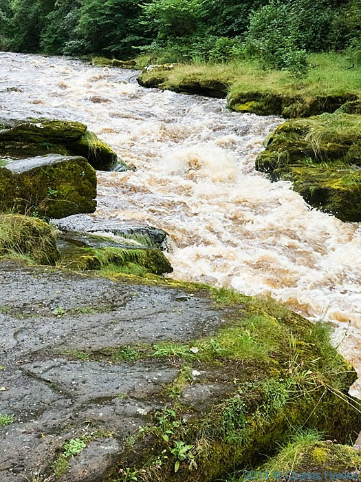 The Strid in full spate, River Wharf, photographed by Charles Hawes