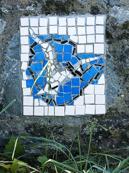 Bird mosaic in the South Stack Nature Resrve, Anglesey, photographed from The Wales Coast Path by Charles Hawes