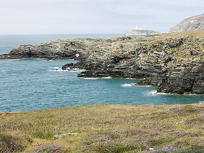 View across the South Stack Cliffs Nature Reserve, photographed from The Wales Coast Path by Charles Hawes
