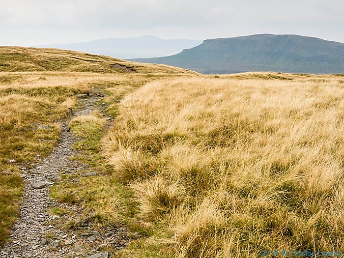 The edge of Fountains Fell and view to Pen-y-Ghent, photographed from The Pennine way by Charles Hawes