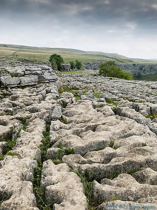 Limestone pavement on top of Malham Cove, photographed by Charles Hawes