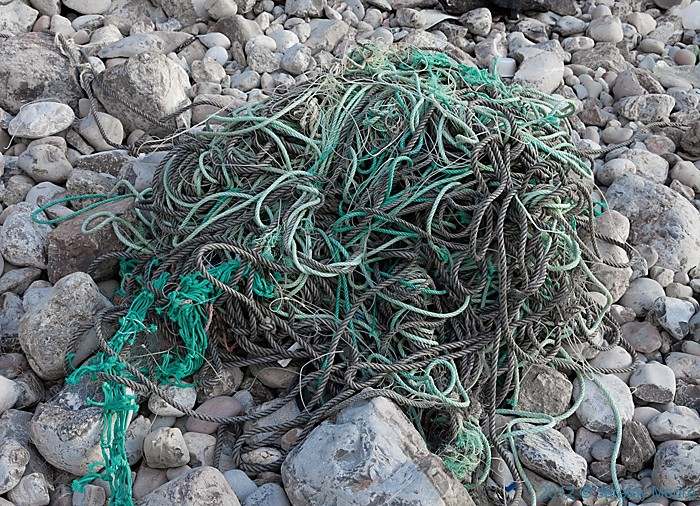 Tideline debris, Bullslaugher Bay, photographed by Jeremy Moore in Wales at the Water's Edge