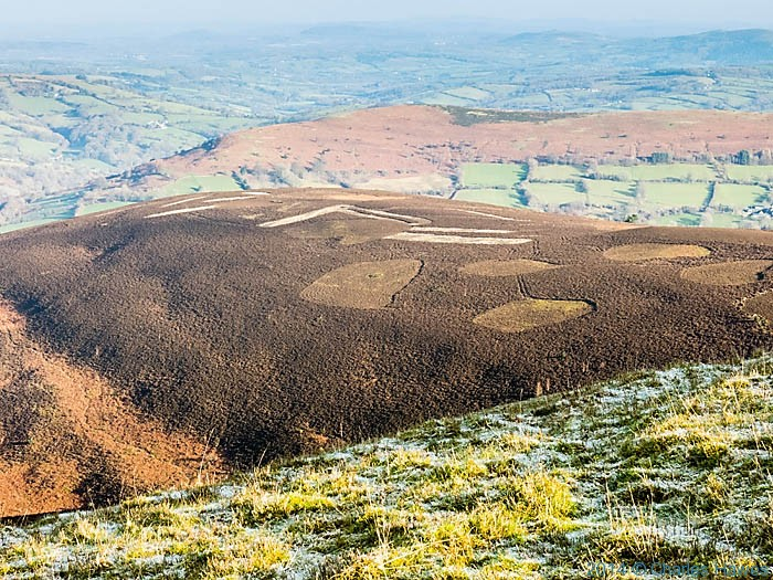 Hillside near Sugar Loaf, Abergavenny, Monmouthshire, photographed by Charles Hawes