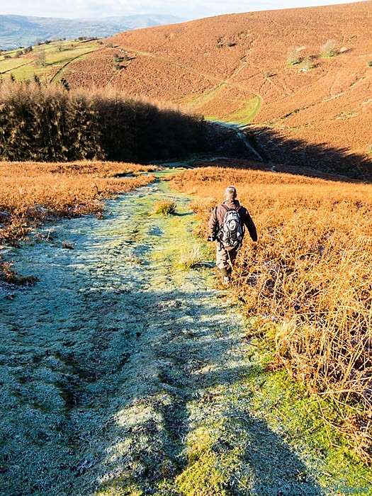 Path near sugar Loaf, Abergavenny, Monmouthshire, photographed by Charles Hawes