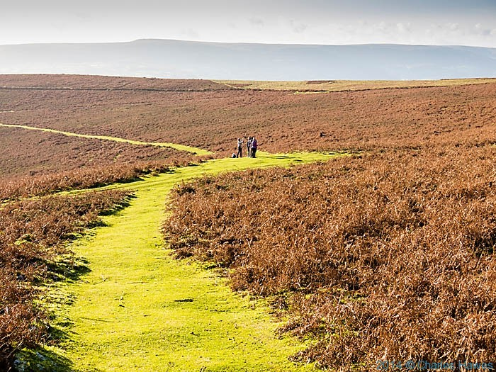 paths on Sugar Loaf, Abergavenny, Monmouthshire, photographed by Charles Hawes