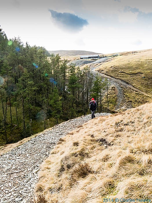 Path above the Afon Clywedog, Powys, photographed by Charles Hawes