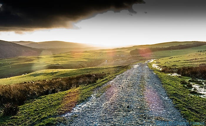 Track near Dylife, Powys, photographed by Charles Hawes