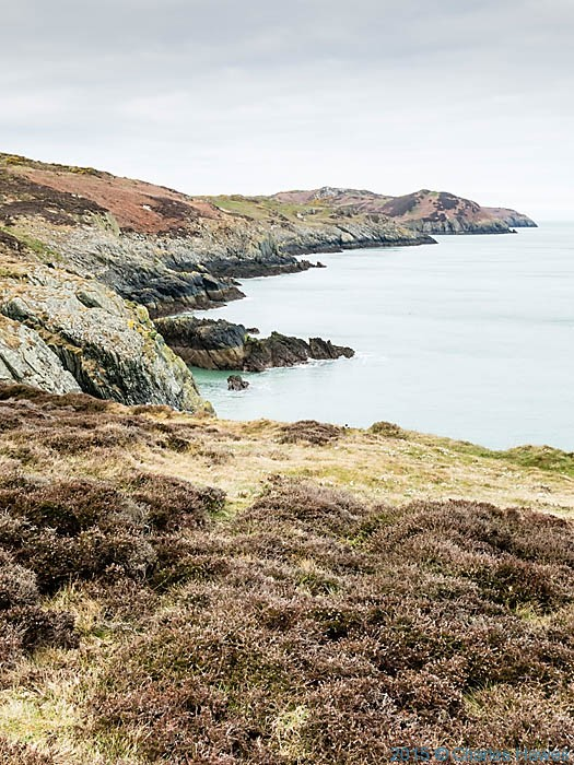 View north from near Bull Bay photographed from the Wales Coast Path in Anglesey by Charles Hawes