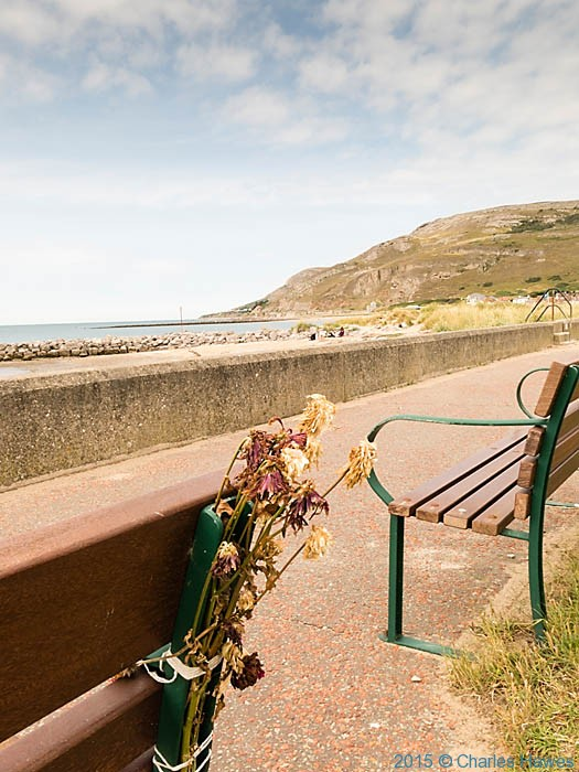 Wilted flowers tied to seat on sea front near Llandudno, photographed from The Wales Coast Path by Charles Hawes