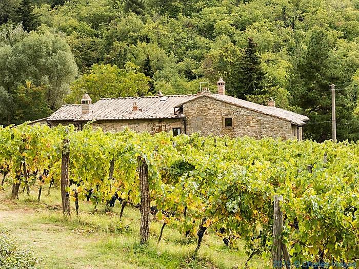 Villa Terrato, near Lamole, Chianti, Tuscany, photographed by Charles Hawes