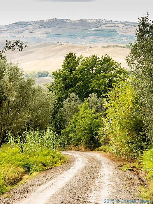Road to Agriturismo Terrapille for Pienza, photographed by Charles Hawes