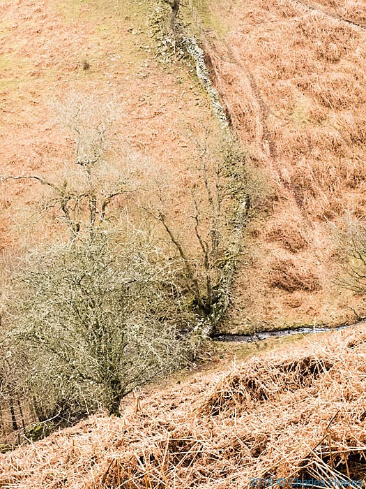 Cwm Nant du photographed by Charles Hawes