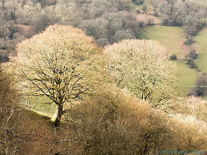 Near Forest Coalpit, photographed from The Cambrian Way by Charles Hawes
