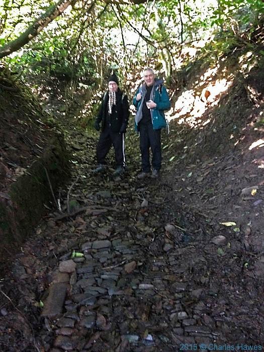 Roman road near Pontypool folly