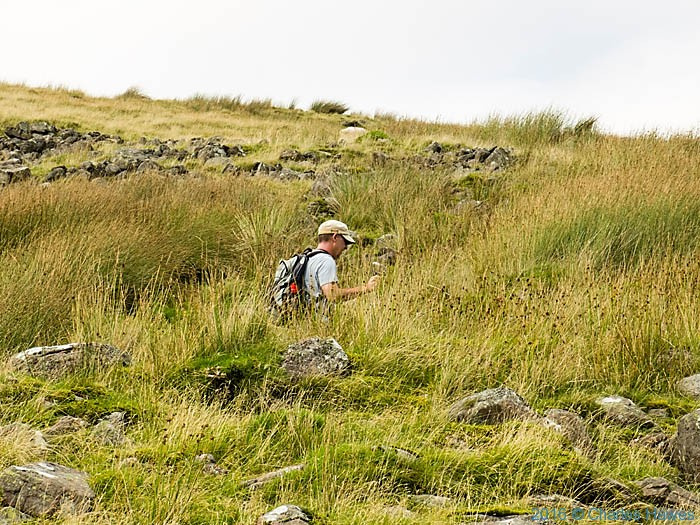 Climbing to Fan Hir on the Cambrian Way, Wales, photographed by Charles Hawes