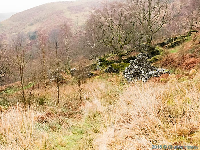 Ruin below Foel Fraith in Doethie valley photographed from the Cambrian way by Charles Hawes