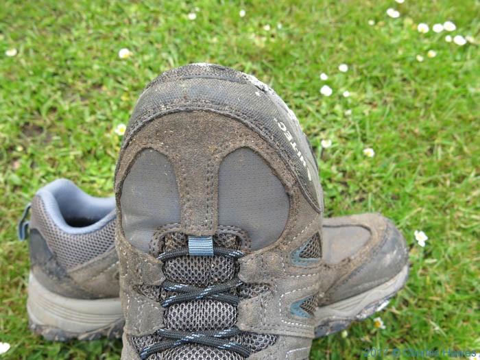 Hi Tec Signal Hill Waterproof Men's Multi-Sport shoe
