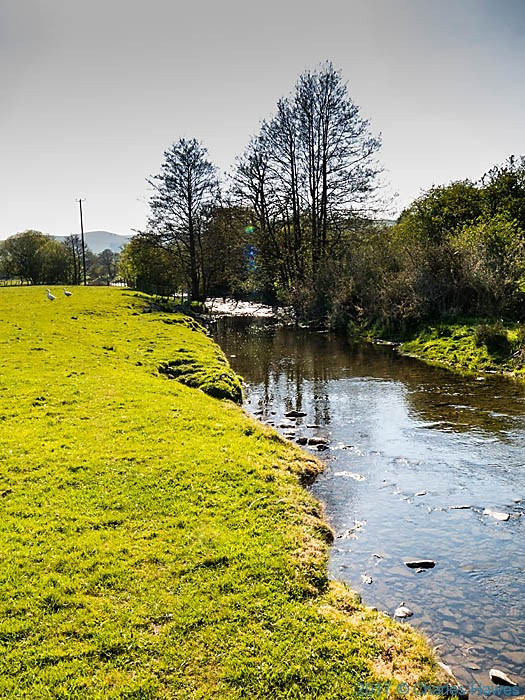 River Ceiriog near Tregeiriog, photographed by Charles Hawes