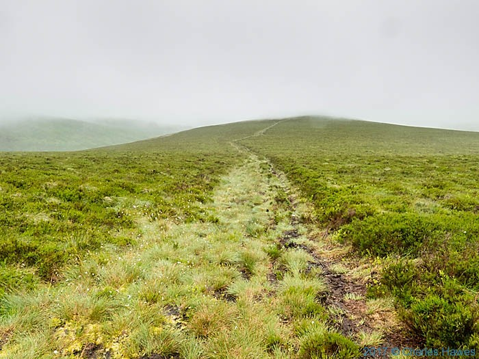 Path from Cadair Berwyn to Llandrillo, photographed by Charles Hawes