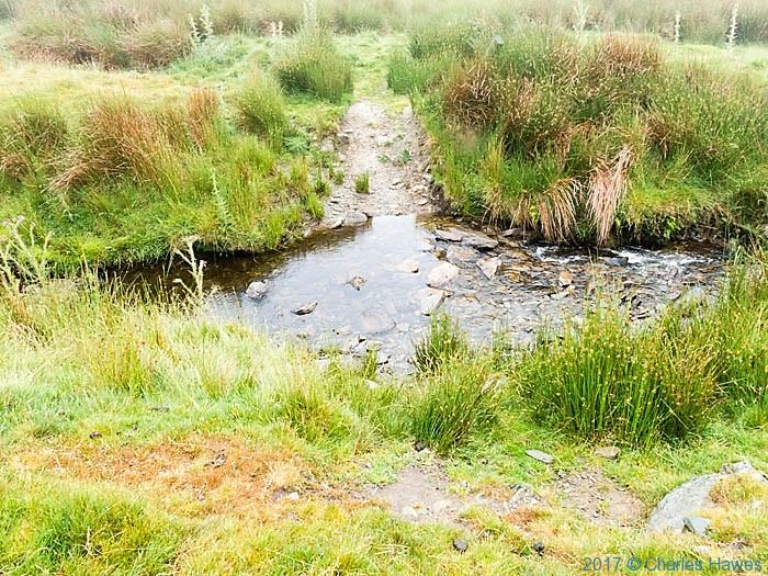 Nanmt Cwm Tywyll near Cadair Berwyn, photographed by Charles Hawes