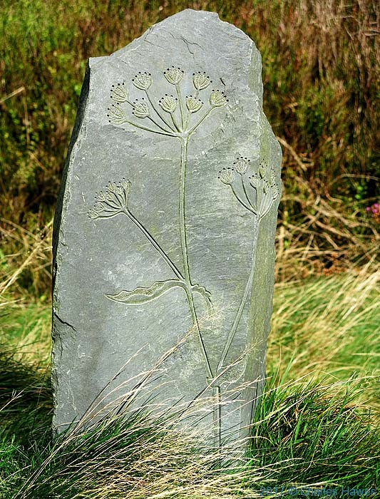Carved stone at Bwlch Glynmynydd, photographed by Charles Hawes