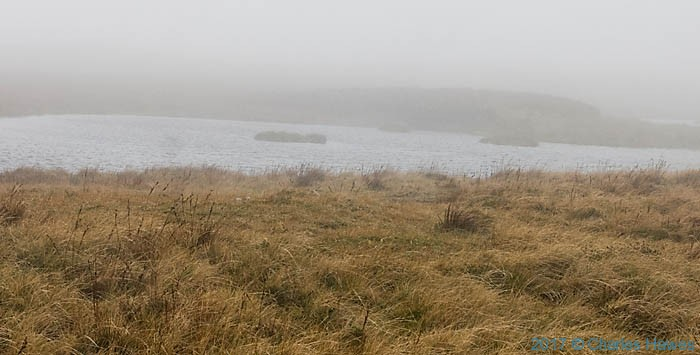 Pond on the Cambrian Way near Plynlimon, photographed by Charles Hawes