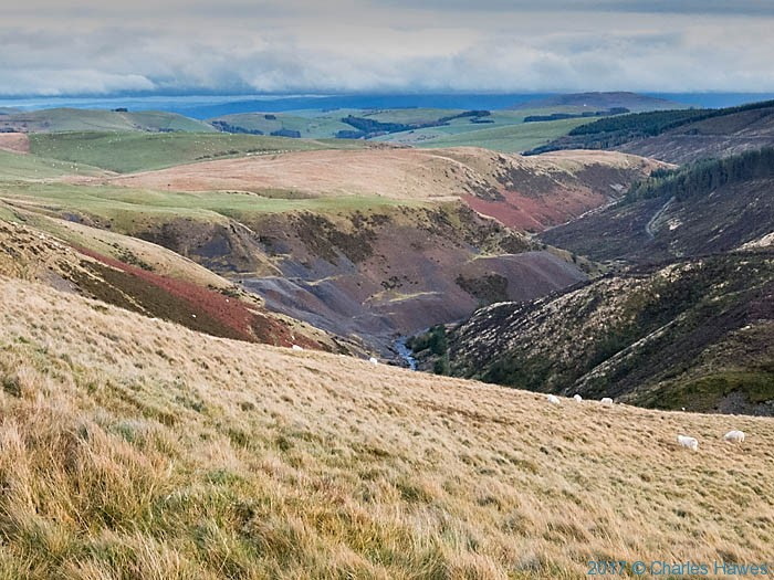 Clywedog Valley, photographed from the Cambrian Way by Charles Hawes