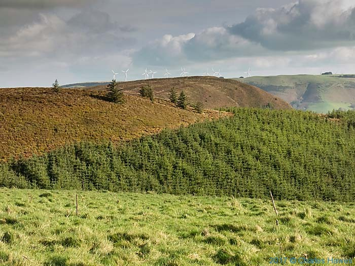 View from the Cambrian Way near Moelfre Fach, photographed by Charles Hawes