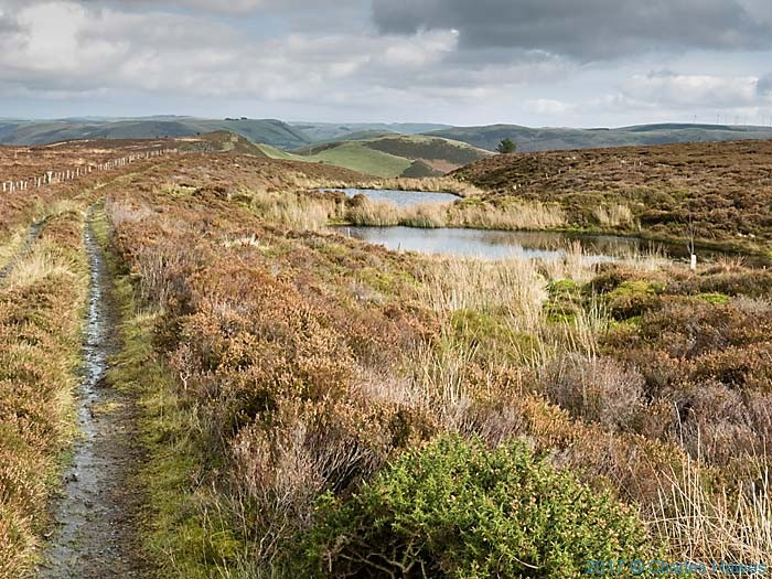 Cambrain Way on edge of Waun Tyisaf, photographed by Charles Hawes