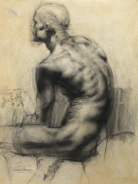 Male torso from behind charcoal on paper 20×24