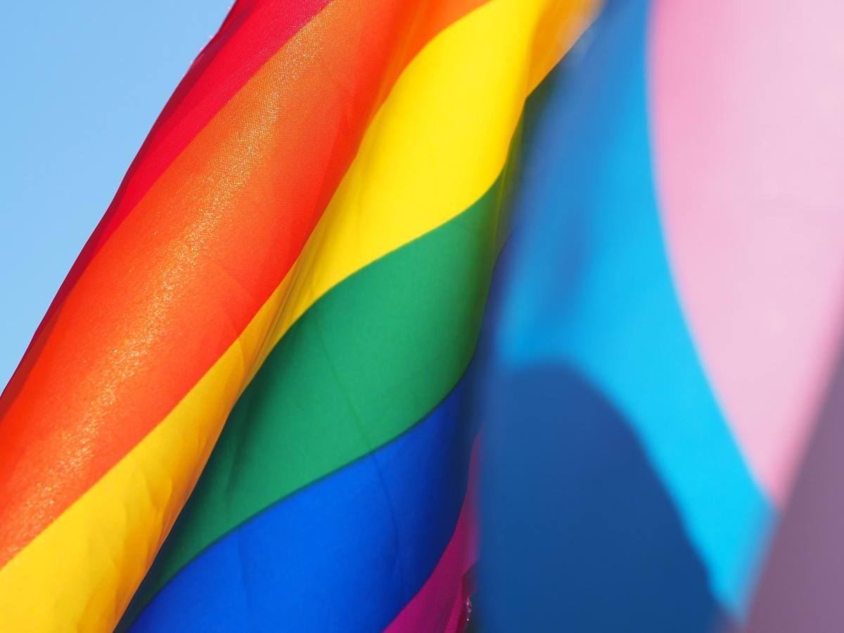 pride and trans pride flag