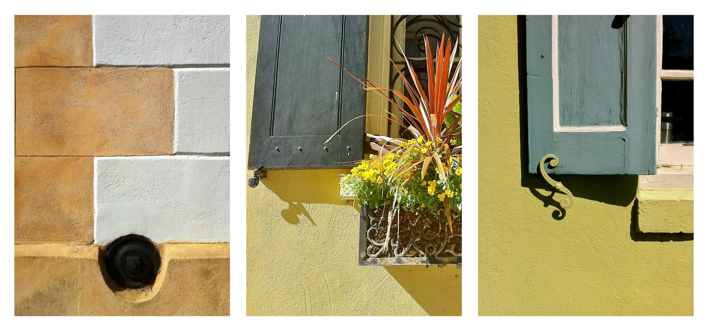 Check out Joan Perry's great blog called Charleston Daily Photo for more Charleston loveliness.