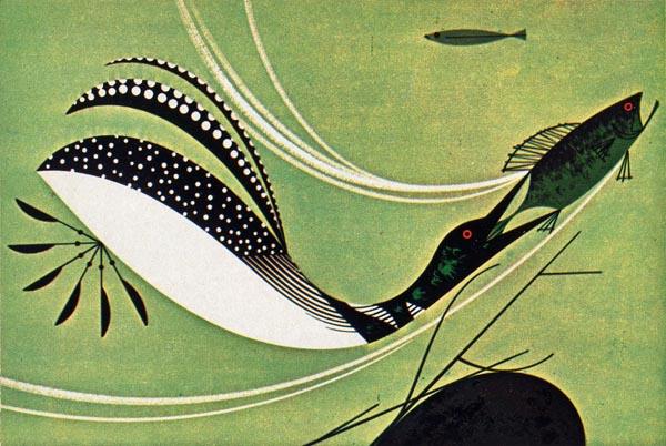 Loon & Fish |  Charley Harper Prints | For Sale