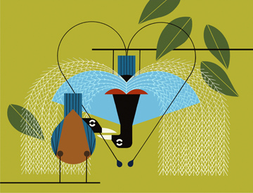 Charley Harper Prints   Today's Specials   Free Delivery On Purchases over $150.00