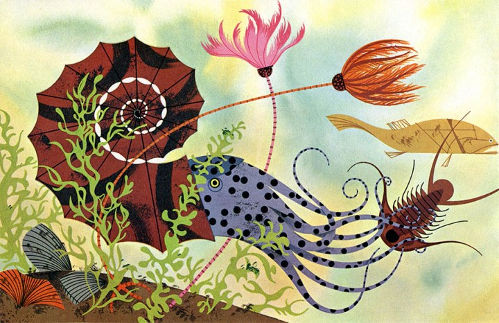 Golden Book of Biology | Sea Creature | Charley Harper Prints | For Sale