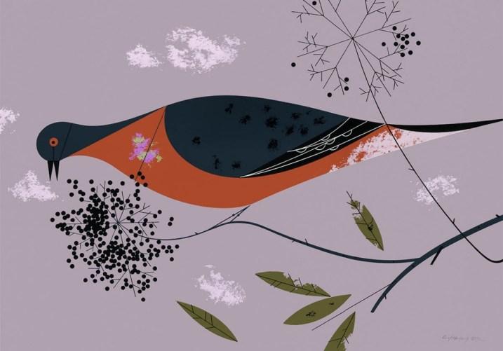 Passenger Pigeon | Charley Harper Prints | For Sale